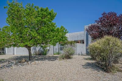 Rio Rancho Single Family Home For Sale: 4808 Cabot Hills Court NE
