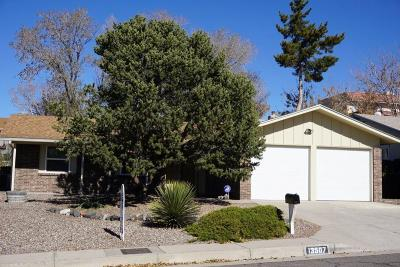 Albuquerque Single Family Home For Sale: 13507 Auburn Avenue NE