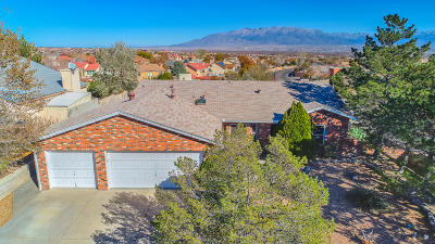 Albuquerque Single Family Home For Sale: 8100 Fairmont Drive NW