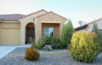 Albuquerque Single Family Home For Sale: 1709 Summer Breeze Drive NW