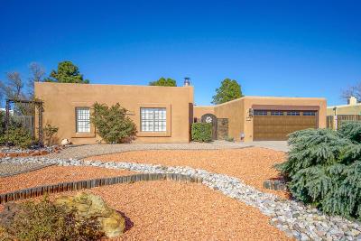 Albuquerque Single Family Home For Sale: 1513 Camino Amparo NW