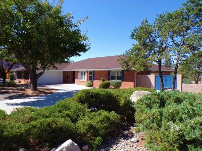 Albuquerque Single Family Home For Sale: 4813 Glenwood Hills Drive NE