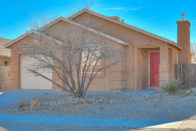 Albuquerque Single Family Home For Sale: 9920 Rawhide Avenue SW
