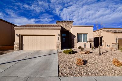 Albuquerque Single Family Home For Sale: 6551 Desert Spirits Road NW