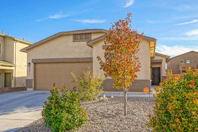 Rio Rancho Single Family Home For Sale: 209 Landing Trail NE