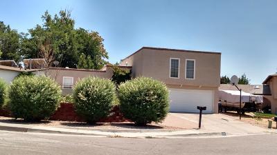 Albuquerque Single Family Home For Sale: 6424 Colleen Avenue NE
