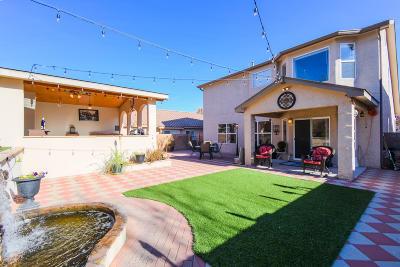 Albuquerque Single Family Home For Sale: 9859 Camino San Martin SW