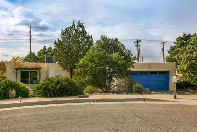 Albuquerque Single Family Home For Sale: 4325 Landau Street NE