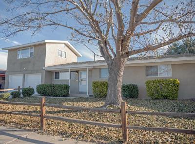 Albuquerque Single Family Home For Sale: 3212 Lykes Drive NE