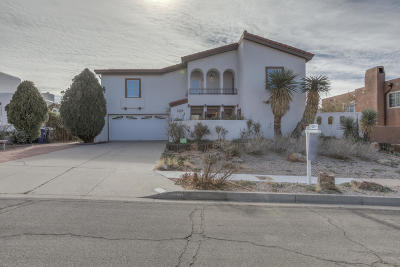 Albuquerque Single Family Home For Sale: 13100 Bluecorn Maiden Trail NE
