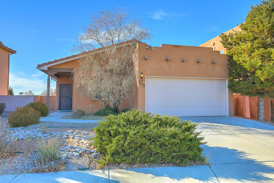 Albuquerque Single Family Home For Sale: 7619 Jackrabbit Street NE