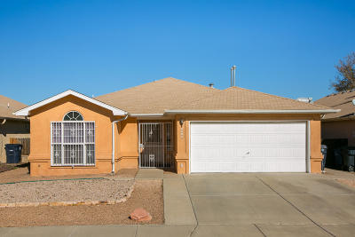 Albuquerque Single Family Home For Sale: 6215 Summer Ray Road NW