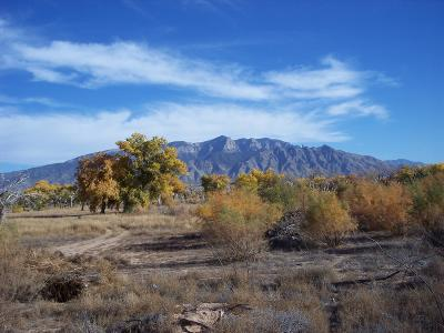Bernalillo Residential Lots & Land For Sale: Corazon Del Bosque Road
