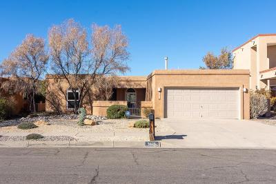 Albuquerque Single Family Home For Sale: 9425 Thornton Avenue NE