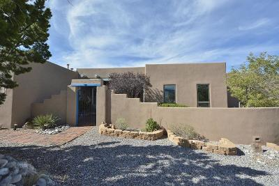 Placitas Single Family Home For Sale: 130 Homesteads Road