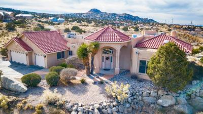 Albuquerque NM Single Family Home For Sale: $449,000