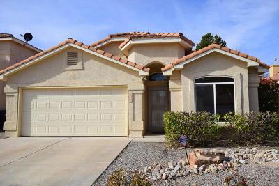 Albuquerque Single Family Home For Sale: 6405 Bosque Meadows Place NW