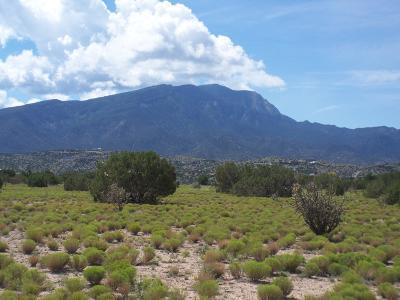 Placitas Residential Lots & Land For Sale: Llano Del Norte