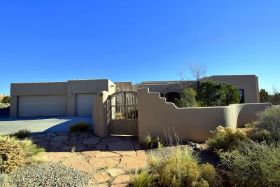 Single Family Home For Sale: 14 Desert Mountain Road