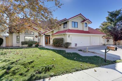 Albuquerque Single Family Home For Sale: 9406 Seabrook Drive NE