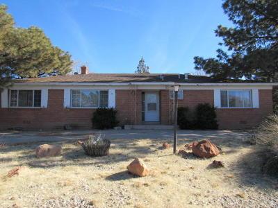 Albuquerque Single Family Home For Sale: 3600 Santa Susana Place NE