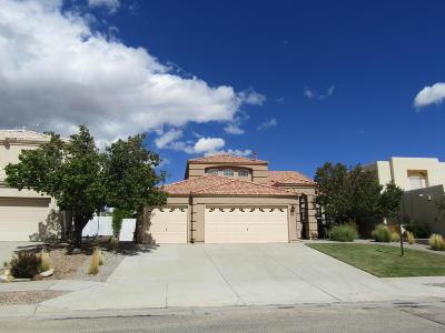 Rio Rancho Single Family Home For Sale: 3513 Calle Suenos