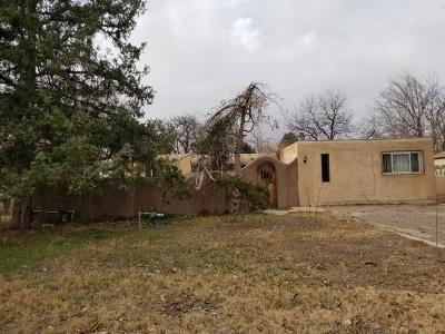 Bernalillo County Single Family Home For Sale: 3927 Las Vegas Drive SW