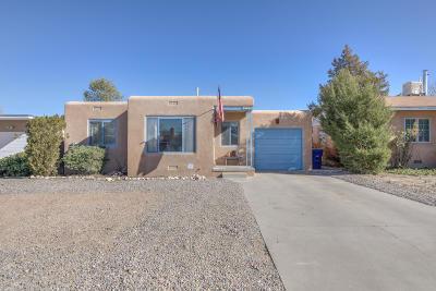 Single Family Home For Sale: 234 Jefferson Street NE
