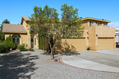Albuquerque Single Family Home For Sale: 6205 Acacia Street NW