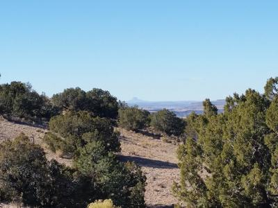 Placitas NM Residential Lots & Land For Sale: $20,000