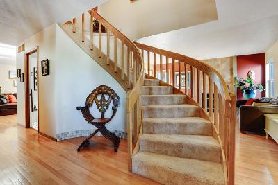 Bernalillo County Single Family Home For Sale: 1004 Daskalos Drive NE
