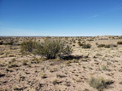 Rio Rancho NM Residential Lots & Land For Sale: $72,500