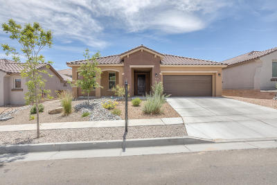 Albuquerque Single Family Home For Sale: 9220 Timber Ridge Road NW