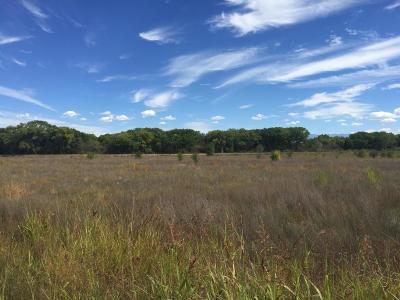 Los Lunas Residential Lots & Land For Sale: Off Los Lentes Road