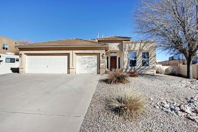 Rio Rancho Single Family Home For Sale: 6245 Cielo Grande Drive NE