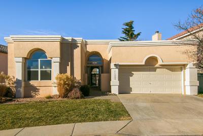 Albuquerque Single Family Home For Sale: 11509 Pine Top Lane NE