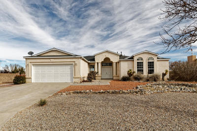 Rio Rancho Single Family Home For Sale: 2889 Pine Forest Drive SE
