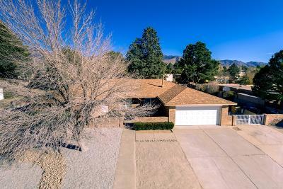 Single Family Home For Sale: 4806 Moon Street NE