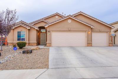 Rio Rancho Single Family Home For Sale: 1213 26th Street SE