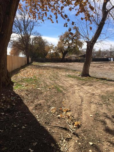 Bernalillo County Residential Lots & Land For Sale: 204/210 Hendrix Road