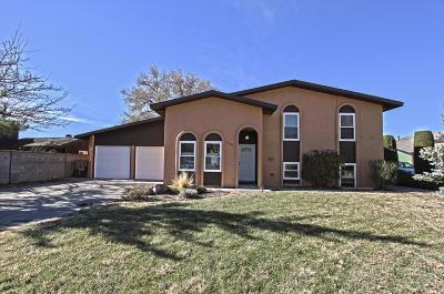 Single Family Home For Sale: 7721 Roberts Street NE