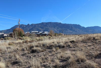 Bernalillo County Residential Lots & Land For Sale: SE Corner Of Alameda & Ventura Boulevard