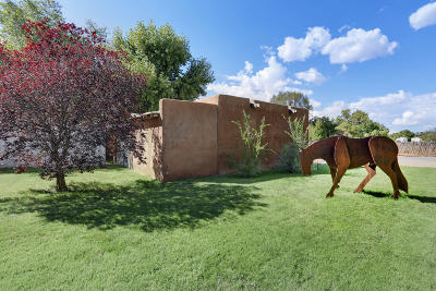 Los Ranchos Single Family Home For Sale: 7617 Guadalupe Trail NW