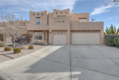 Albuquerque Single Family Home For Sale: 6628 Salt Cedar Trail NW
