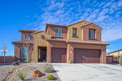 Rio Rancho Single Family Home For Sale: 823 Mesa Roja Trail