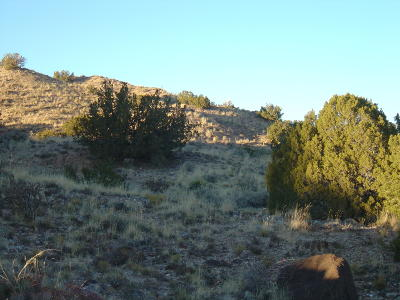 Rio Rancho NM Residential Lots & Land For Sale: $89,000