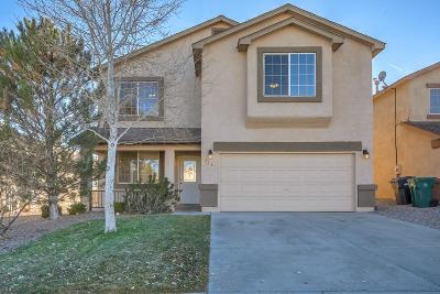 Rio Rancho Single Family Home For Sale: 716 Sunny Meadows Drive NE