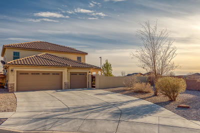 Rio Rancho Single Family Home For Sale: 2700 Walsh Loop SE
