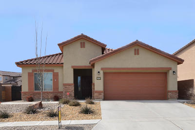 Albuquerque Single Family Home For Sale: 9501 Flint Rock Drive NW