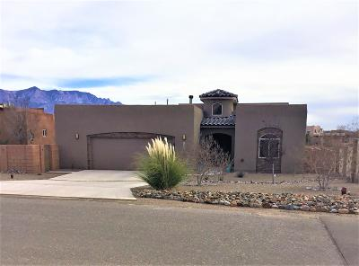 Rio Rancho Single Family Home For Sale: 6608 Nagoya Road NE